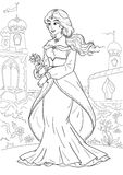 Princess Stock Illustrations