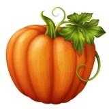 autumn pumpkins stock illustration