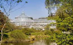 Botanischer Garten Kopenhagen Dänemark Stockfoto Bild 53997554