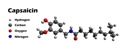 Capsaicin Molecule With Chemical Formula Stock