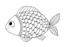 Fish Sea Horse Coloring Pages Royalty Free Stock Images