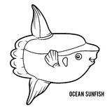 Mola Stock Illustrations
