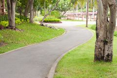 Curve sidewalk in the park Royalty Free Stock Photos
