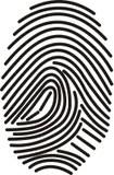 Fingerprint stock vector. Illustration of evidence