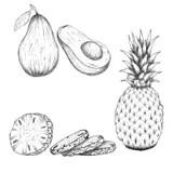 Hand Drawing Illustration Of Pineapple. Fresh Fruit Sketch