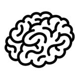 Human Brain With Close Up Of Active Neurons Stock Image