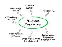 Talent Management Process stock illustration. Illustration