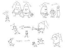 White Blood Cell Cartoon Stock Illustrations