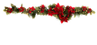 Poinsettia Flower Border Stock Image Image 32849621