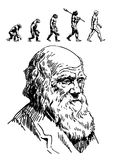 Evolution of man stock vector. Illustration of change