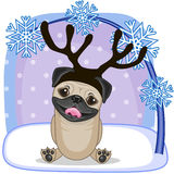 pug stock illustrations 4 828