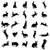 Rabbit silhouettes stock vector. Illustration of