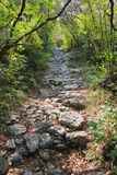Rocky footpath in the mountains Royalty Free Stock Photos