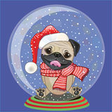 pug stock illustrations 7 561