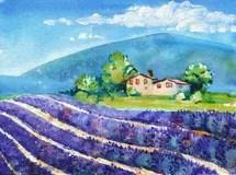 Aquarelllavendel Fngt Landschaft Natur Frankreichs Provence Auf Stock Abbildung  Bild 65876082
