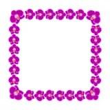 Schne Orchidee Blht Rahmen Vektor Abbildung  Bild 69584145