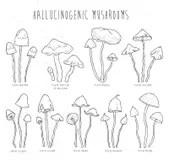 Set Hallucinogenic Mushrooms Color. Stock Vector