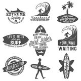 Curled Reef Shark Summer Surf Club Black And White Stamp