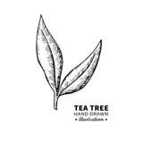 Plant A Tree Poster stock illustration. Illustration of