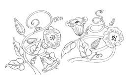 Climbing Flower Stock Illustrations
