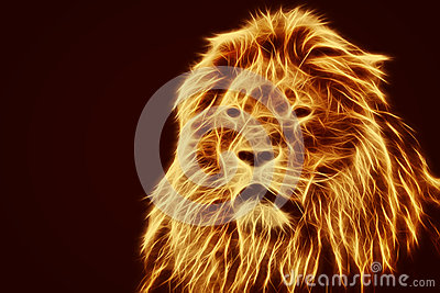Abstract Artistic Lion Portrait Fire Flames Fur Stock Photo  Image 49021657