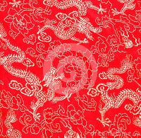 Asian Dragon Pattern Stock Image