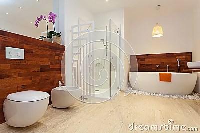 Bagno Caldo Moderno Immagine Stock Libera da Diritti  Immagine 33359736