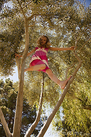 Blonde Girl Climbing High In A Tree Royalty Free Stock Photo  Image 11411855