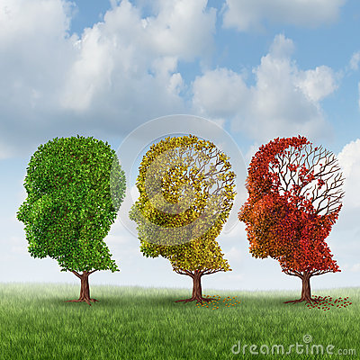Fall Time Wallpaper Brain Aging Stock Images Image 31489814