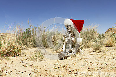 Christmas In The Desert Stock Photo Image 30969160