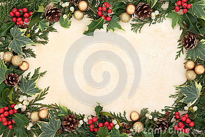 Christmas Floral Border Stock Photography Image 33420502