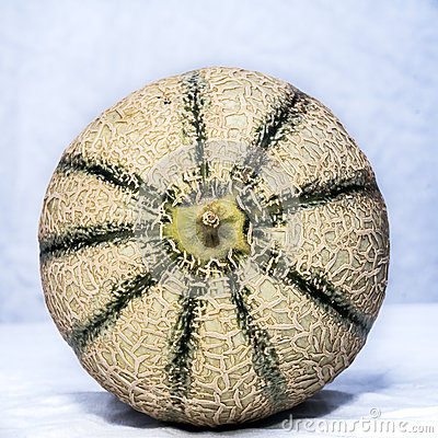Close up of cantaloupe