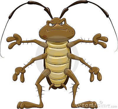 Cockroach Royalty Free Stock Images - Image: 15995819