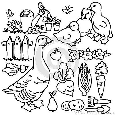 Coloring Book, Cartoon Farm Goose And Animals Stock