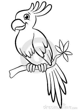 Coloring Pages. Birds. Little Cute Parrot. Stock Vector