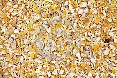 Cracked Corn Bird Seed Royalty Free Stock Photo  Image 18219935
