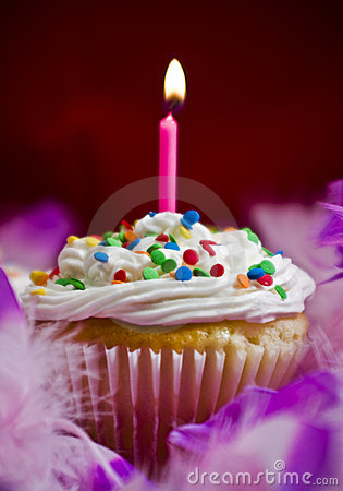 Cute Birthday Cake Wallpaper Cupcake With Lite Candle Stock Images Image 7110764