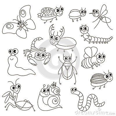 Cute Small Insects Set, The Big Page To Be Colored, Simple