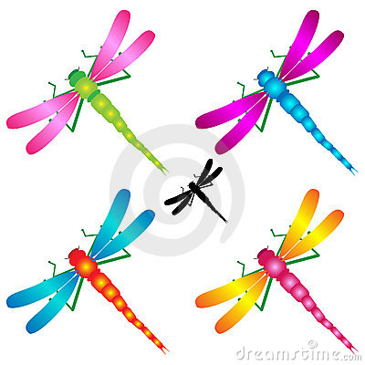 dragonflies royalty free stock