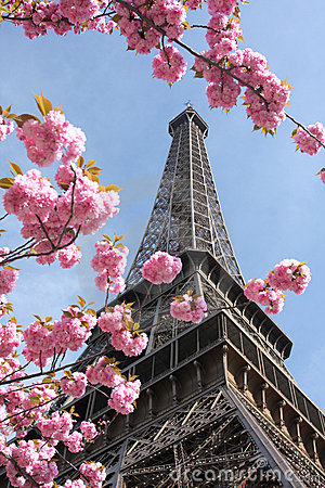 3d Architecture Wallpaper Eiffel Tower In Spring Paris France Stock Image Image