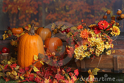 Fall Desktop Wallpaper With Pumpkins Fall Scene With Pumpkins And Colored Leaves Stock Image