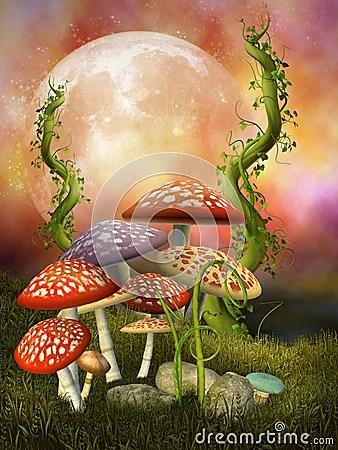 Fantasy Mushrooms Royalty Free Stock Photo  Image 13716855