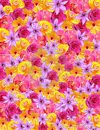 Flower Background For Spring & Easter Stock Photo Image
