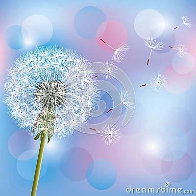 3d Animation Wallpaper Download Flower Dandelion On Light Blue Pink Background Stock