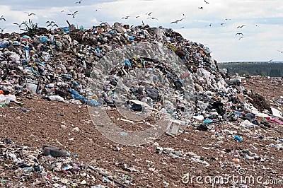 Garbage Dump Royalty Free Stock Photography  Image 9377727