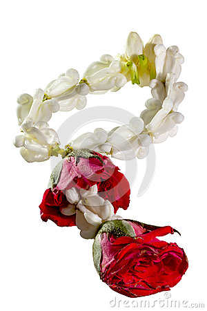 Garland Jasmine And Rose Flower Isolated On White