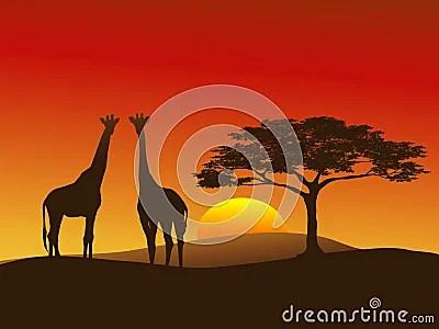 Cute Jungle Wallpaper Giraffe Silhouette 2 Stock Photo Image 5711170
