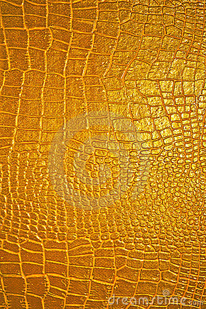 Golden Dragon Texture Royalty Free Stock Images  Image 4480849