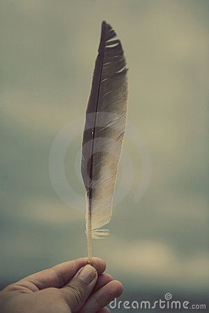 Hand Holding Feather Stock Photography  Image 20238302