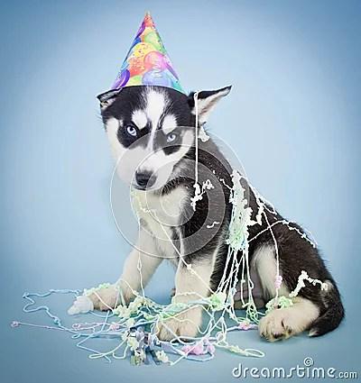 Happy Birthday! Royalty Free Stock Photo Image 38642465